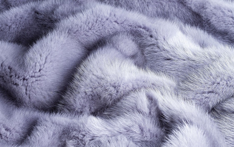 gray-blue-background-natural-fur-texture-mink.jpg